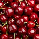 Illustration Cerise : le top 3 des variétés cultivées en France