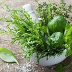 Illustration En cuisine, on raffole des herbes fraîches aromatiques !