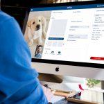 Illustration Téléconsultations vétérinaires : chats et chiens face à la caméra